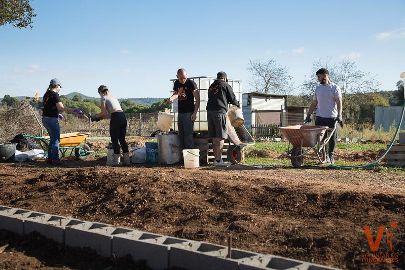 Acciones Construcción Protectora Animal Voluntarios Itinerantes