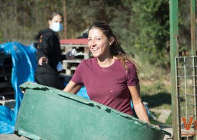 Voluntarios Itinerantes Animals Sense Sostre Refugio
